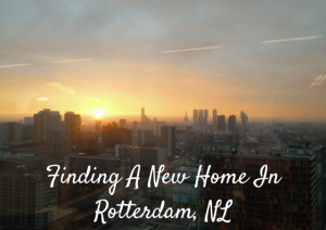 Finding a new home in Rotterdam