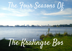 Four Seasons of the Kralingse Bos