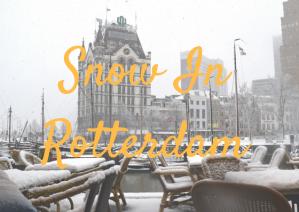 Snow In Rotterdam DEC (1)