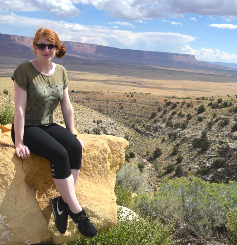 Scenic Route 89A Vermillion Cliffs Navajo Bridge Road Trip US