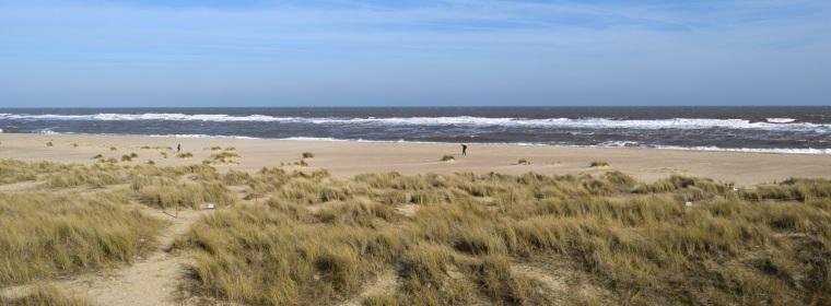 Sand Dunes Walk at Winterton On Sea Norfolk Togetherintransit.nl 3